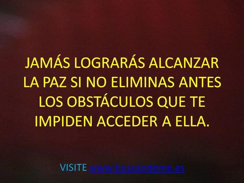 1 a JAMÁS LOGRARÁS.jpg