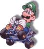 LuigiMaster